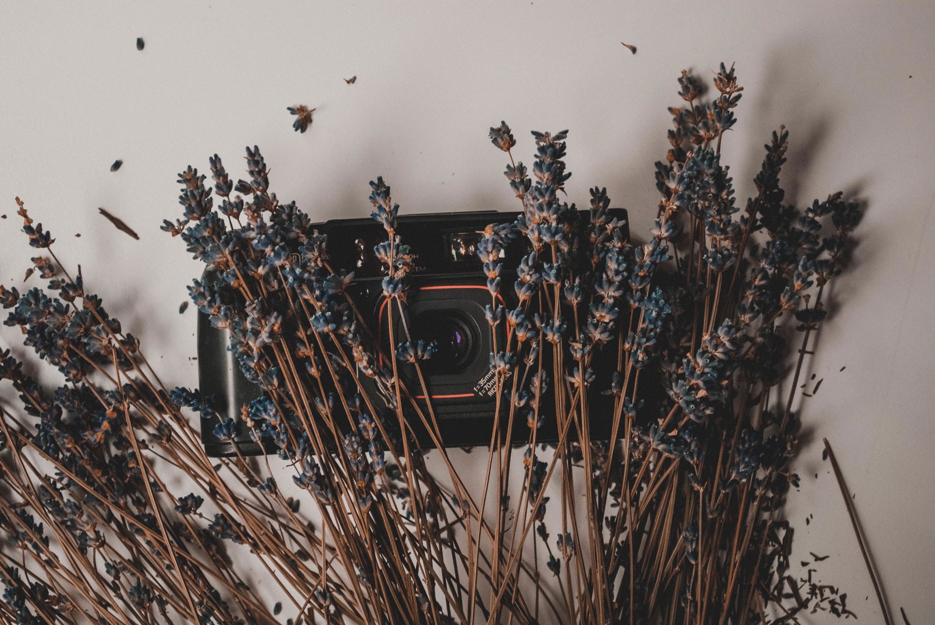 camera with a bouquet of dried lavender on it
