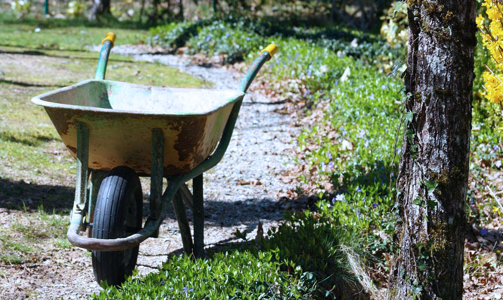 picture of a wheelbarrow on a green alley surrounded by trees