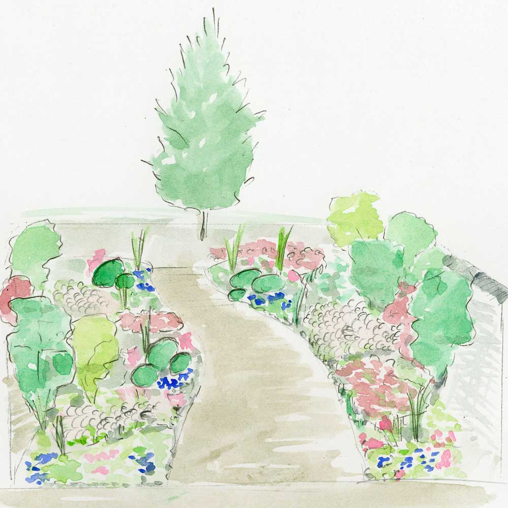 watercolour drawing of a garden made by our landscape expert